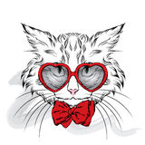 Vettore del gatto Gatto del fumetto Gatto sveglio nei vestiti Hip-hop Gatto in cappuccio e vetri hipster Cartolina con il gatto Fotografie Stock