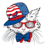 Vettore del gatto Gatto del fumetto Gatto sveglio nei vestiti Hip-hop Gatto in cappuccio e vetri hipster Cartolina con il gatto Fotografia Stock Libera da Diritti