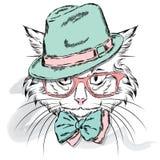 Vettore del gatto Gatto del fumetto Gatto sveglio nei vestiti Hip-hop Gatto in cappuccio e vetri hipster Cartolina con il gatto Fotografie Stock Libere da Diritti