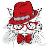 Vettore del gatto Gatto del fumetto Gatto sveglio nei vestiti Hip-hop Gatto in cappuccio e vetri hipster Cartolina con il gatto Immagine Stock Libera da Diritti