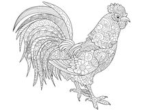 Pollo Di Zentangle Per Il Libro Da Colorare Per Ladulto
