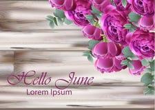 Vettore del mazzo delle peonie dell'invito di nozze Colori floreali d'annata della viola della decorazione royalty illustrazione gratis