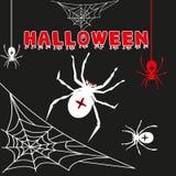 Vettore del nero di Halloween della ragnatela della ragnatela Fotografia Stock