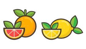 Vettore del pompelmo e del limone del fumetto Immagini Stock