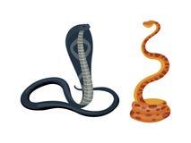 Vettore del serpente della cobra Fotografie Stock Libere da Diritti