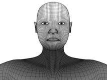 Vettore del wireframe della testa umana 3d Fotografie Stock Libere da Diritti