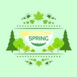 Vettore dell'albero di verde dell'insegna della carta di regalo della primavera Immagini Stock