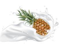 Vettore dell'ananas 3d con gli elementi realistici di progettazione della spruzzata Packa Fotografia Stock Libera da Diritti
