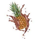 Vettore dell'ananas 3d con gli elementi realistici di progettazione della spruzzata Packa Fotografie Stock Libere da Diritti