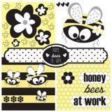 Vettore dell'ape e del fiore del miele Immagini Stock