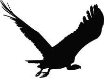 Vettore dell'avvoltoio Royalty Illustrazione gratis