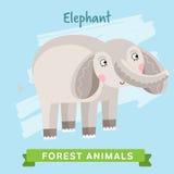 Vettore dell'elefante, animali della foresta Fotografie Stock