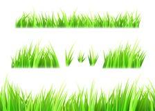 Vettore dell'erba isolato su fondo bianco Ciuffi di erba Insieme verde del prato inglese di estate royalty illustrazione gratis