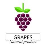 Vettore dell'etichetta dell'uva del fumetto Fotografia Stock