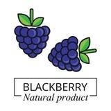Vettore dell'etichetta di Blackberry Fotografie Stock Libere da Diritti