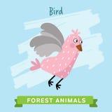 Vettore dell'uccello, animali della foresta Immagini Stock Libere da Diritti