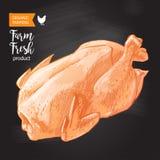 Vettore della carne di pollo Fotografie Stock Libere da Diritti