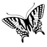 Vettore della farfalla Fotografia Stock Libera da Diritti