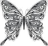 Vettore della farfalla del pizzo Immagine Stock Libera da Diritti