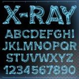 Vettore della fonte dei raggi x Rontgen alfabeto trasparente Ricerca di radiologia 3D ABC Osso blu Tipografia medica capitali Fotografia Stock Libera da Diritti
