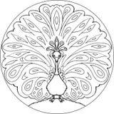 Vettore della mandala del pavone di coloritura Immagini Stock