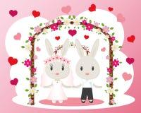 Vettore della partecipazione di nozze dei coniglietti Fotografia Stock Libera da Diritti