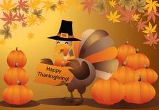 vettore della scheda della zucca di Halloween del tacchino di ringraziamento Immagine Stock
