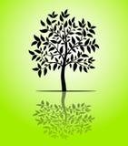 Vettore della siluetta dell'albero Immagini Stock Libere da Diritti