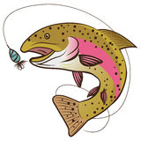 Vettore della trota iridea isolato su un fondo bianco Illustrazione di vettore della mascotte del pesce Fotografia Stock Libera da Diritti