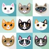 Vettore delle razze dei gatti Immagini Stock Libere da Diritti
