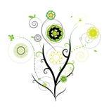 Vettore di disegno floreale Fotografie Stock