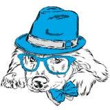 Vettore di Labrador Cane di razza Cucciolo sveglio Labrador che indossa un cappello, gli occhiali da sole e un legame Immagine Stock