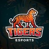 Vettore di logo di sport della tigre Modello di progettazione della mascotte Illustrazione di baseball o di calcio Insegne della  Fotografie Stock