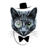 Vettore di schizzo del fronte del gatto Fotografia Stock Libera da Diritti