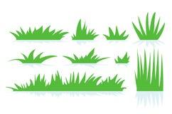 Vettore di un'erba verde fotografia stock libera da diritti