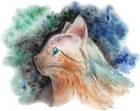 Vettore dipinto del ritratto del gatto Immagine Stock