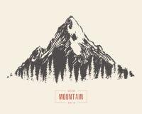 Vettore disegnato a mano dell'abetaia del paesaggio della montagna illustrazione di stock