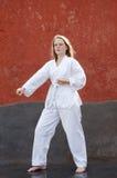 Vettore ed illustrazione marziali del Taekwondo art Fotografia Stock Libera da Diritti