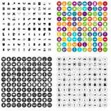 100 vettore fissato degli insetti icone variabile Illustrazione Vettoriale
