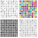 100 vettore fissato del parco icone variabile Illustrazione Vettoriale
