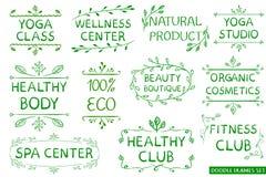 VETTORE fissato: eco disegnato a mano verde, sano, forma fisica, segni concentrare della stazione termale Immagini Stock