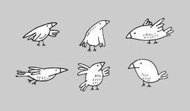 Vettore fissato uccelli dell'inchiostro Immagine Stock