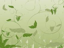 Vettore floreale astratto con le piante, farfalle Fotografia Stock