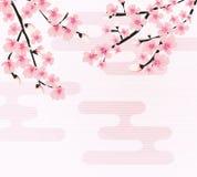 Vettore floreale astratto di Sakura Flower Japanese Natural Background Immagini Stock Libere da Diritti