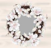 Vettore floreale della carta della struttura della corona della magnolia Posto per i testi Fotografia Stock Libera da Diritti