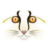 Vettore giallo del fronte del gatto Illustrazione di Stock