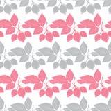 Vettore Gray Pink Rosehip Berries Stripes senza cuciture Immagine Stock
