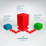 Vettore infographic Immagine Stock