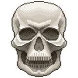 Vettore isolato cranio umano del pixel illustrazione di stock