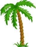 vettore isolato tropicale delle palme Fotografia Stock
